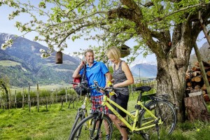 Radfahren Vinschgau