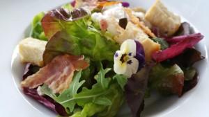 Salat Pfifferlinge