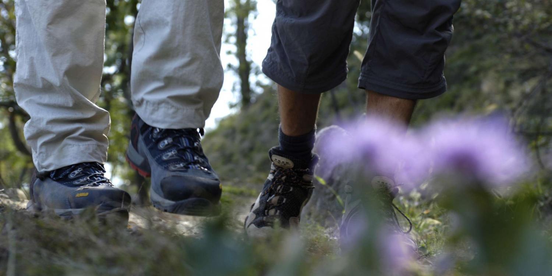 Wandertour: Rittersteig Naturns