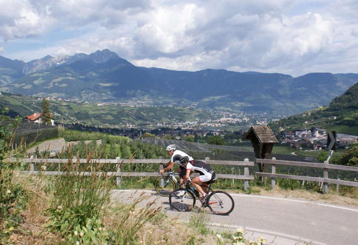 Rennradfahren im Vinschgau
